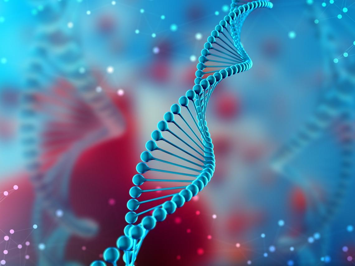 Fragmento de ADN