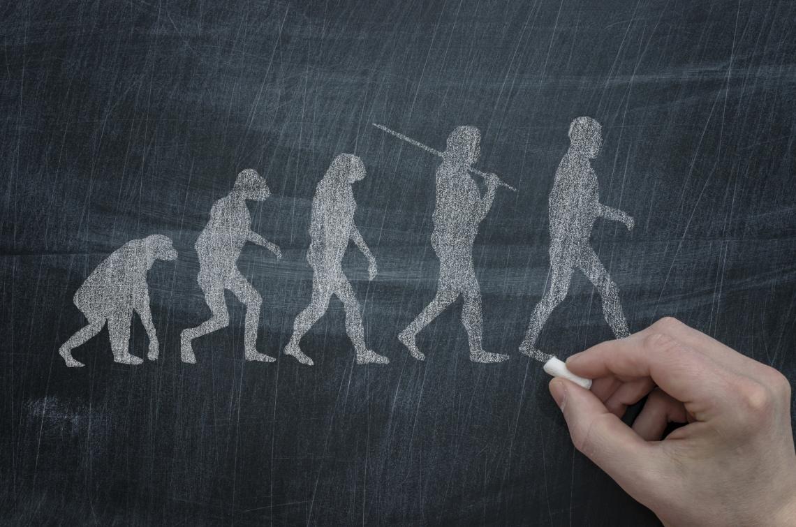 homo-sapiens1