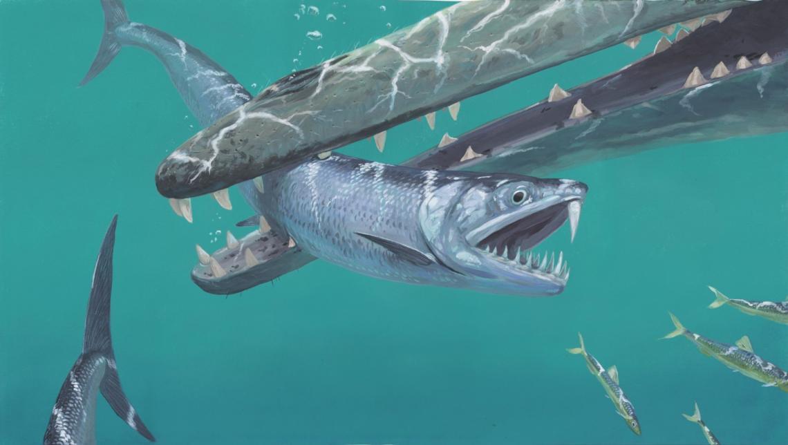 boquerones-prehistoricos